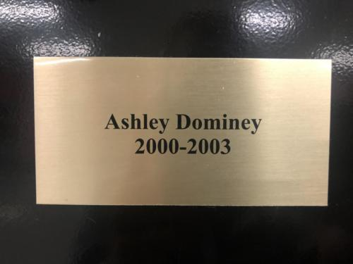 2000-2003 Ashley Dominey