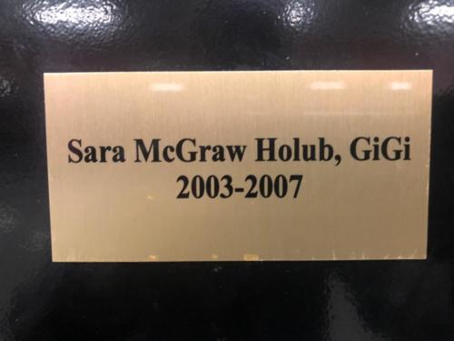 2003-2007 Sara McGraw Holub, GIGi